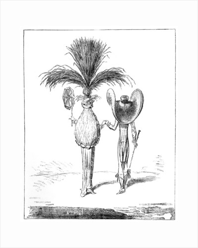 Parasols for 1795 by Anonymous