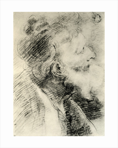 Study for the Head of an Old Man by Peter Paul Rubens