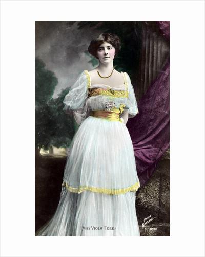 Viola Tree (1885-1938), English actress by Bassano Studio