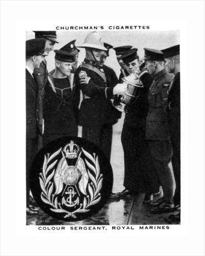 Colour Sergeant, Royal Marines by WA & AC Churchman