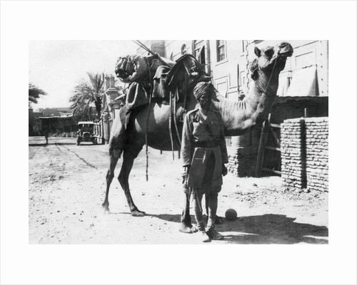 Indian camel trooper, Baghdad by Anonymous