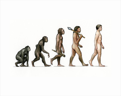 Evolution of Man by Karen Humpage