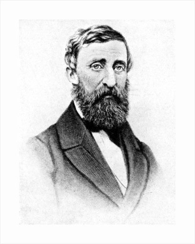 Henry David Thoreau, American nature writer by Rischgitz Collection