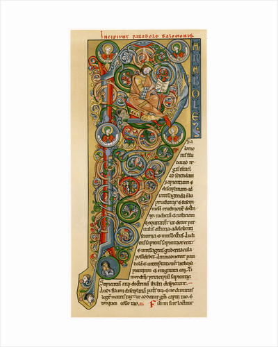 Illuminated iniitial 'P' by Anonymous