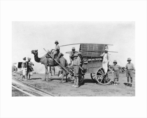 A camel cart, India by Anonymous