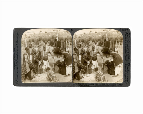 Experts purchasing silk cocoons, for export to France, Antioch, Syria by Underwood & Underwood