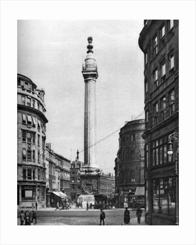 The Monument to the Great Fire, London by McLeish