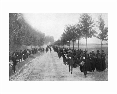 Belgians fleeing from Termonde, First World War by Anonymous