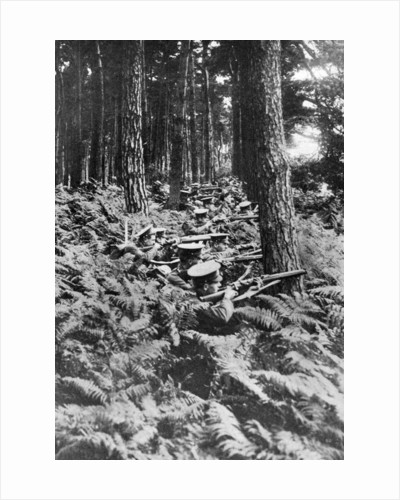 British infantry in a wood, First World War by Anonymous