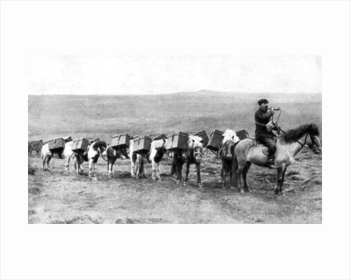 A mail caravan crossing the Icelandic plains, Iceland by Anonymous