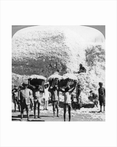 Men carrying baskets of cotton at an Indore cotton mill, India by Anonymous