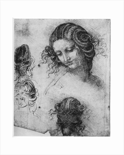 Study for the Head of Leda by Leonardo Da Vinci