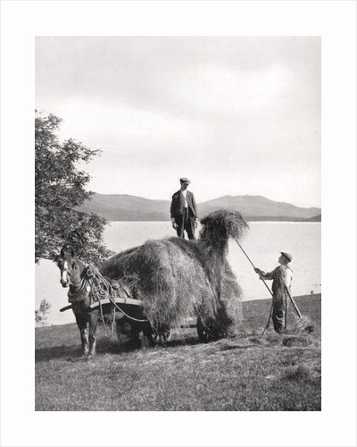 Loading hay onto a wagon on the shores of Loch Lomond, Scotland by Donald McLeish