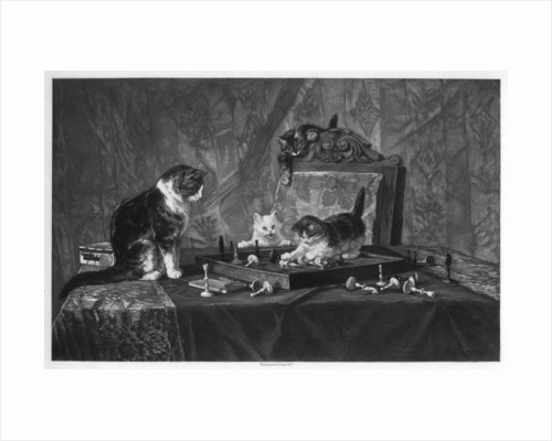 Cats playing with a chessboard by Goupil and Co