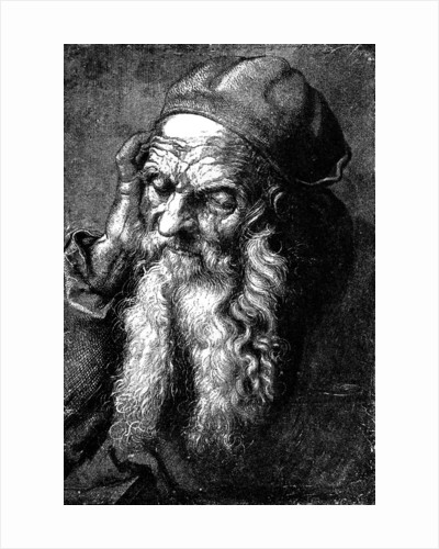 Study of an Old Man by Anonymous
