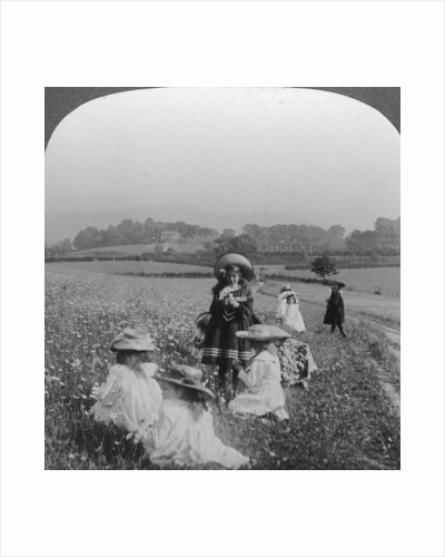 Children in a meadow, Keswick, Cumbria by Excelsior Stereoscopic Tours