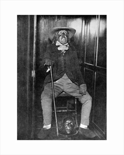 Effigy of Jeremy Bentham with his embalmed head, University College, London by Anonymous