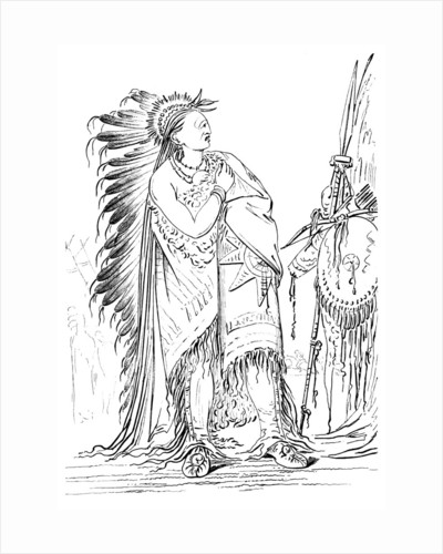 'Two Crows', Native American male of the Minataree tribe by Myers and Co