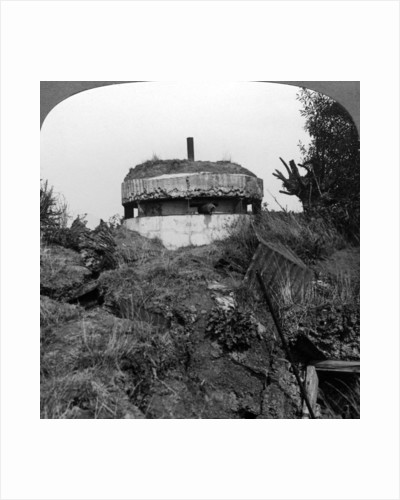 German pillbox, Bullecourt, France, World War I by Realistic Travels Publishers