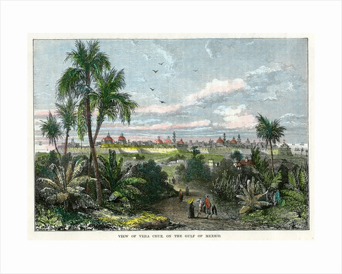 View of Vera Cruz, on the Gulf of Mexico' by Anonymous