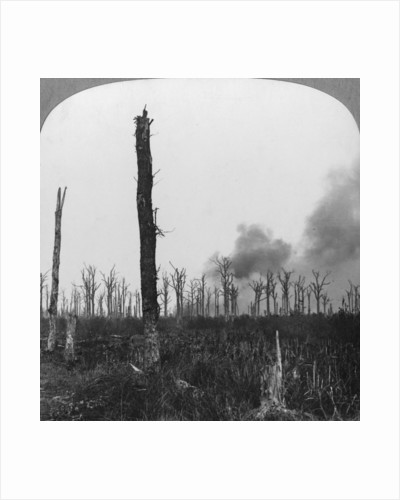 High explosive shells bursting in Mametz Wood, France, World War I by Realistic Travels Publishers