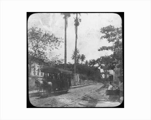 Street scene with horse-drawn tram, Pernambuco, Brazil by Anonymous
