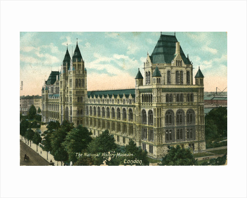 The National History Museum, London by Anonymous
