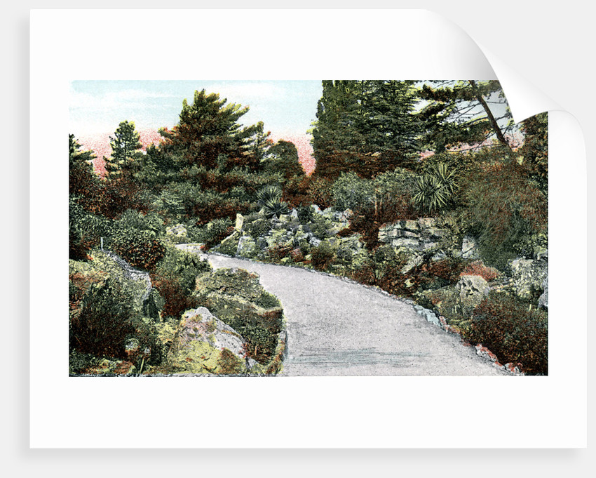 Genial The Rockery, Kew Gardens, Richmond Upon Thames, London By Anonymous