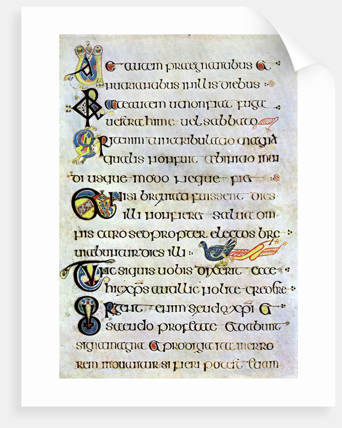 Decorated text page, 800 AD by Anonymous