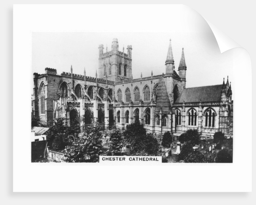 Chester Cathedral by Anonymous