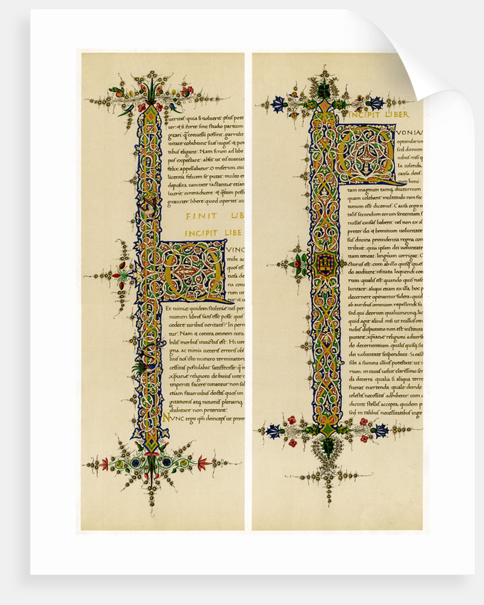 Illuminated initial letters by Anonymous