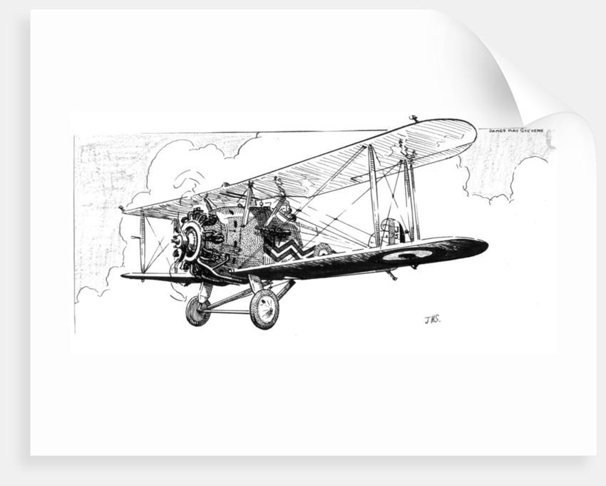 The Hawker Danecock aeroplane by James Hay Stevens