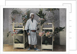 Flower Merchant in Japan by Charles Gillot
