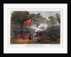 Tenth Regiment of Foot, at the Battle of Steenkerque, 3rd August 1692 by Madeley