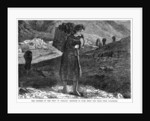 The Distress in the West Ireland: Bringing in Fuel from the Hills near Kylemore by Anonymous