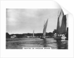 Yachting on Wroxham Broads by Anonymous