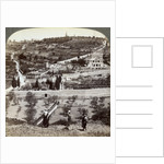 The Garden of Gethsemane and the Mount of Olives, Palestine by Underwood & Underwood