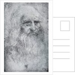 Self Portrait of Leonardo da Vinci by Leonardo Da Vinci