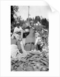 A food market in Darjeeling, West Bengal, India by Anonymous