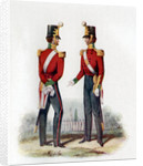 Uniform of the 19th Regiment by Anonymous