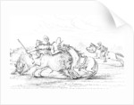 Buffalo attacking a cowboy on a horse by Myers and Co