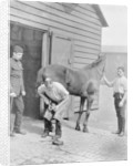 The Farrier-Major of the Royal Horse Guard by Gregory & Co