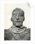 Head of the mummy of Rameses III, Ancient Egyptian pharaoh of the 20th Dynasty by Winifred Mabel Brunton