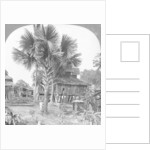 Native house built on piles, Bhamo, Burma by Stereo Travel Co