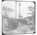 Street scene with horse-drawn tram, Pernambuco, Brazil by Anonymous