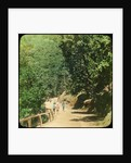 The Mall Road, Simla, India by Anonymous