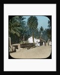 Road from Colombo to Galle, Colombo, Ceylon by Anonymous