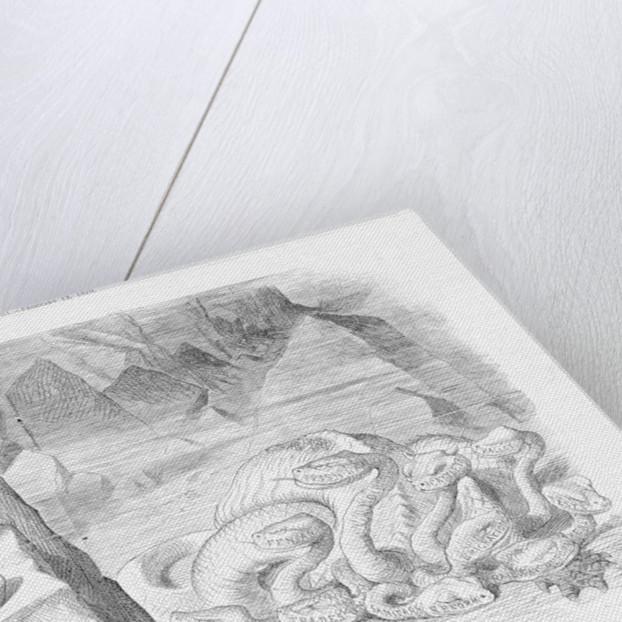 Hercules and The Hydra by Joseph Swain