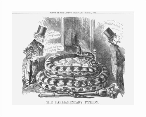The Parliamentary Python by Anonymous