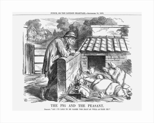 The Pig and The Peasant by John Tenniel